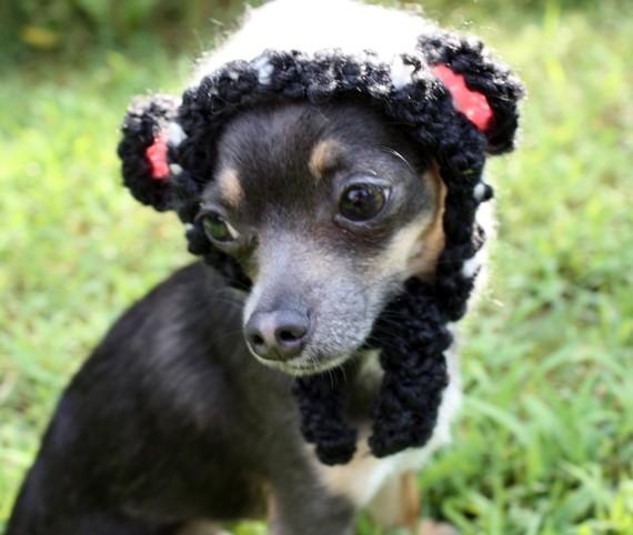 Panda Bear pup hat